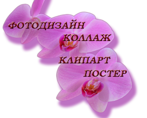 fotodizain