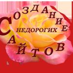 sozdanie-nedorogih-sajtov-internet-magazinov